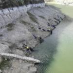 Campeonato Autonómico de Canarias de Agua dulce